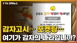 [자막뉴스] '포켓팅 대란' 대한민국이 감자로 하나된 이유