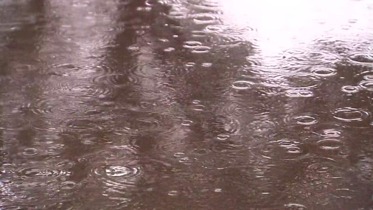 [날씨] 제주 산간 첫 '호우경보'...내일까지 전국 비바람
