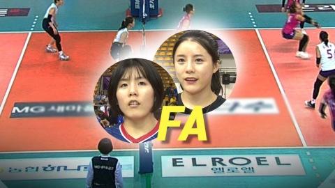 """""""이재영·이다영 한 팀에서?"""" 여자배구, 샐러리캡 신경전 '치열'"""