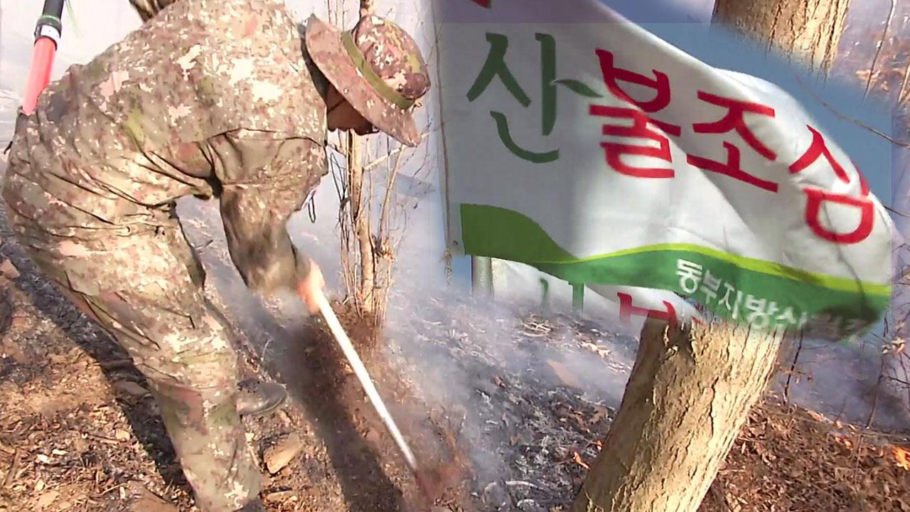 건조한 날씨에 강한 바람...식목일에 더 조심해야 할 산불