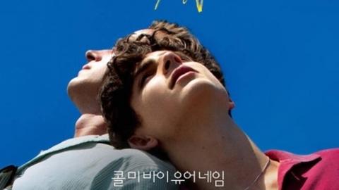 [할리우드Y] 아미 해머X티모시 샬라메, '콜 미 바이 유어 네임' 속편 출연