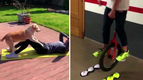 [영상] 세계 각국 선수들의 독창적인 홈 운동 방법