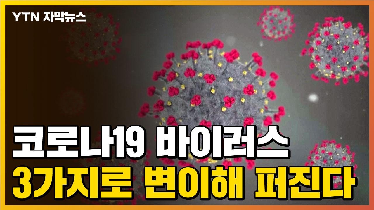"""[자막뉴스] """"3가지로 변이하는 코로나19""""...그 중 한국은?"""