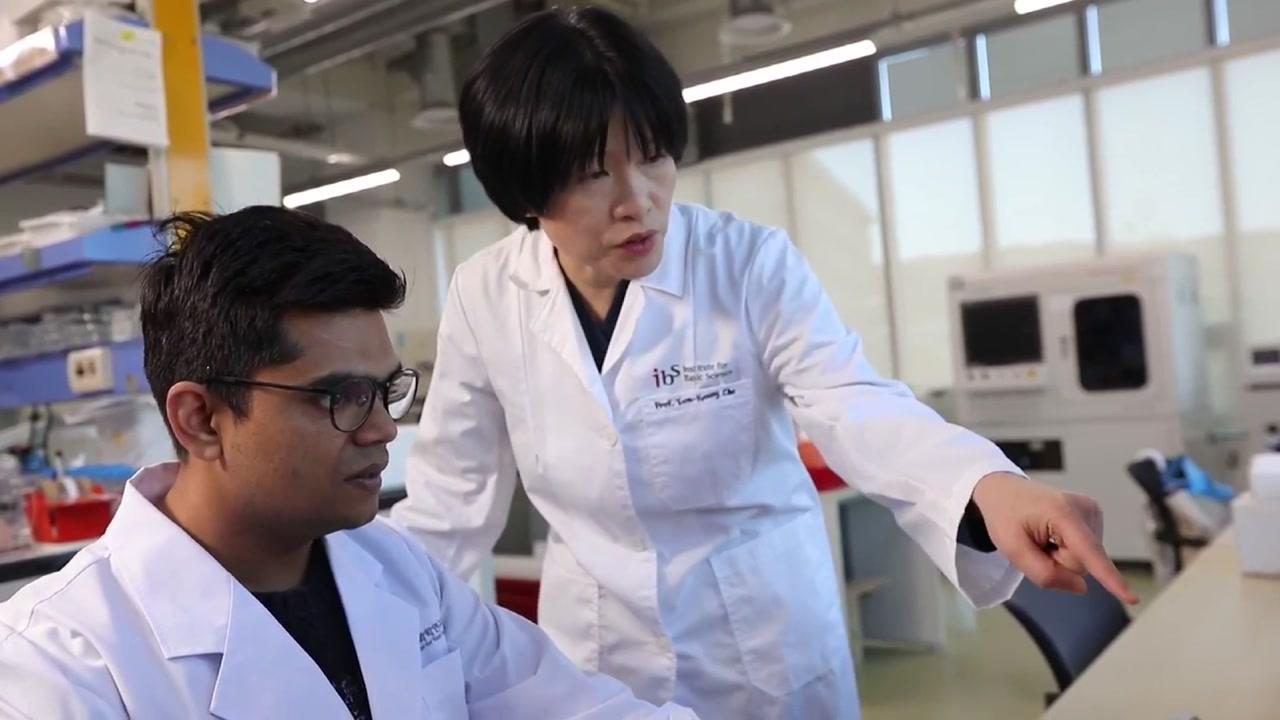 장난감처럼 돌려 감염병 진단하는 기구 개발
