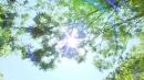 [날씨] 전국 대체로 맑고 따뜻...자외선 강해