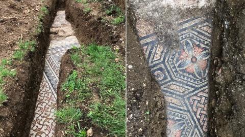 이탈리아 포도밭서 완벽 보존된 고대 로마 타일 바닥 발견