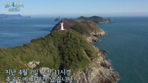 """'삼시세끼5', 죽굴도 산불에 """"책임 통감…복원 위해 노력할 것"""""""
