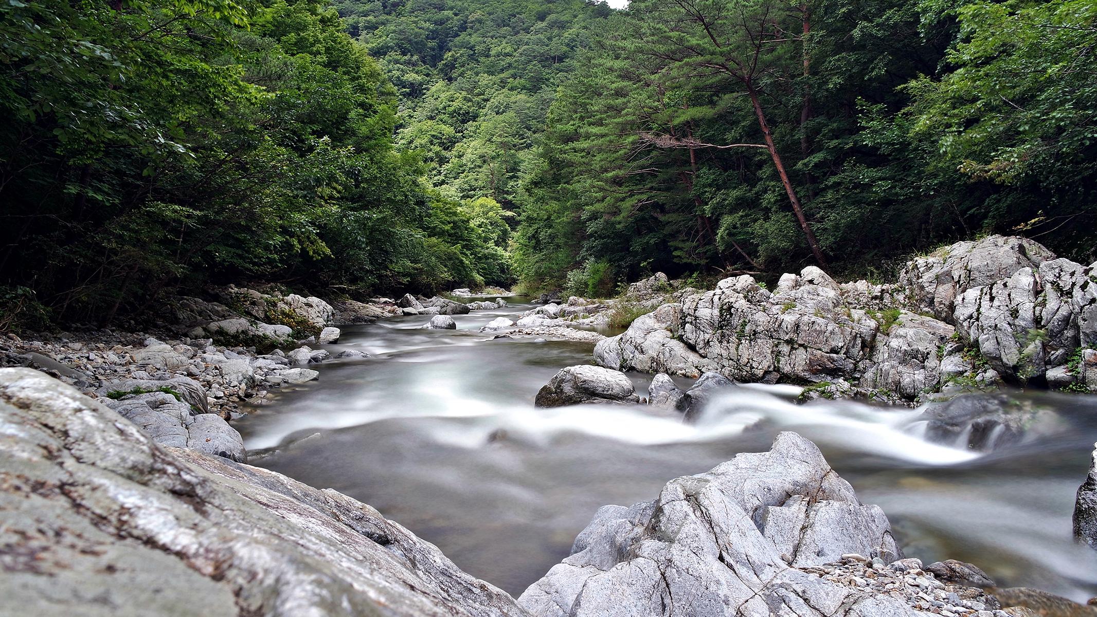 [산행 포인트] 아침가리골 트레킹...더위는 물길에 보내고 청정 추억만 한아름 담는다