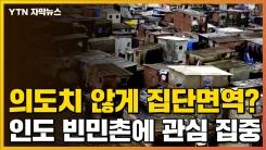 [자막뉴스] 의도치 않게 집단면역 형성? 인도 빈민촌에 관심 집중
