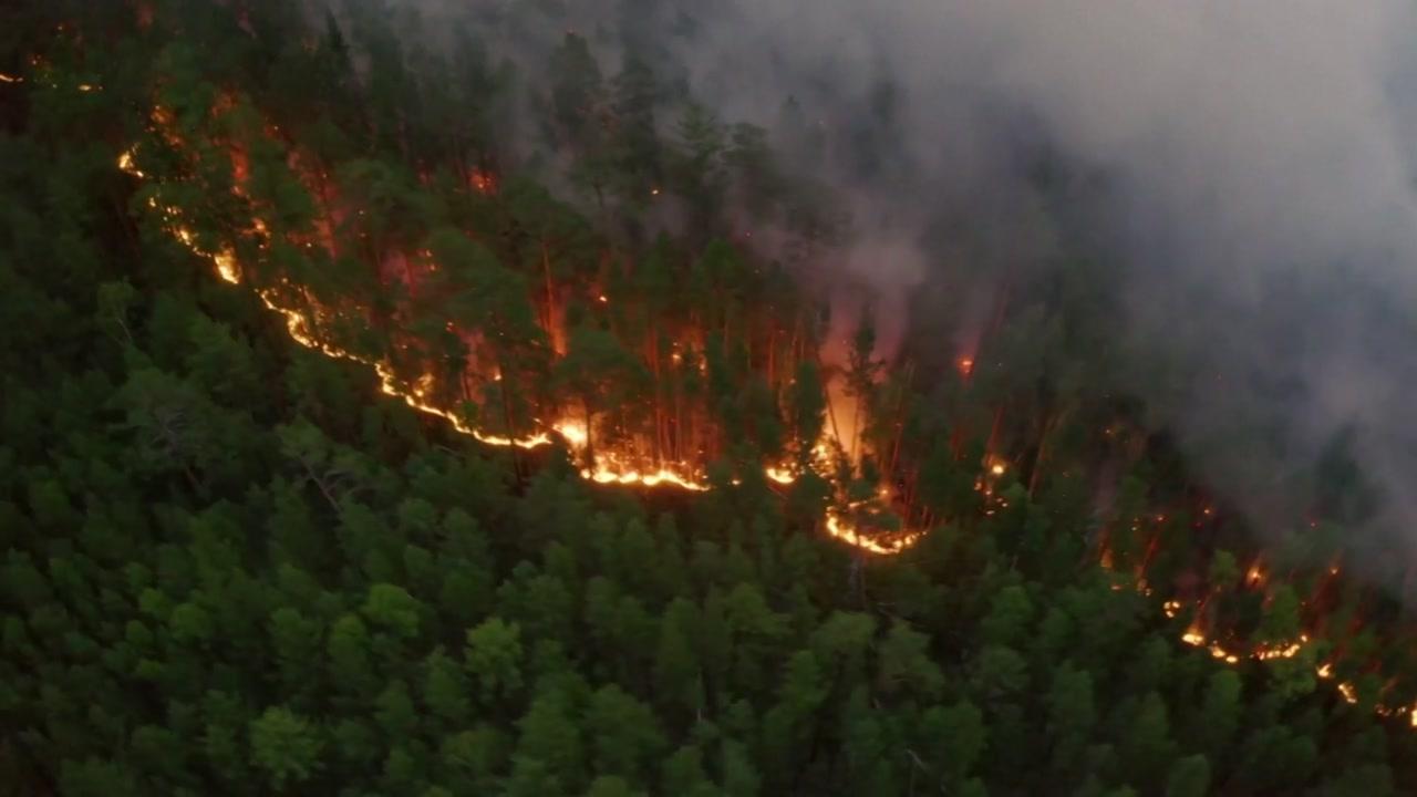 불타는 시베리아?...이상 고온에 연일 산불로 잿더미