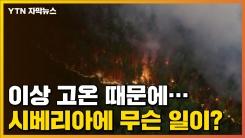 [자막뉴스] 이상 고온 때문에...시베리아에 무슨 일이?