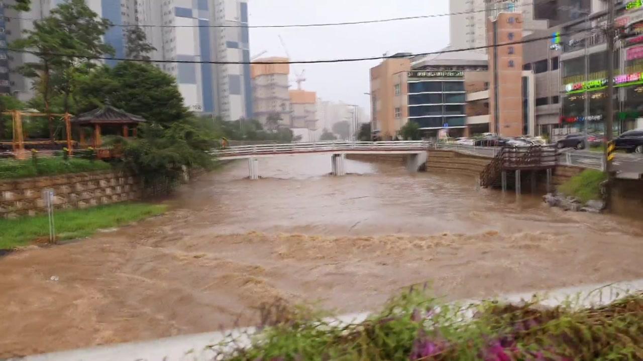 [앵커리포트] 충청권 폭우 계속...급류로 바뀐 시내 하천·물에 잠긴 도로