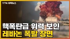 [자막뉴스] 도시 전체가 쑥대밭...최소 수천명 사상케 한 폭발