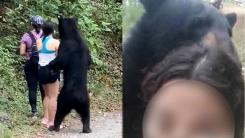 산책객과 셀카 찍은 멕시코 야생 곰, 당국에 붙잡혀
