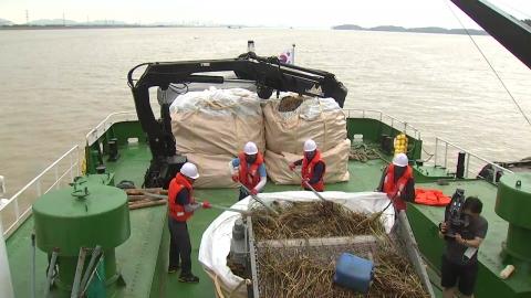 집중호우로 해양 쓰레기 폭증…수거 총력전
