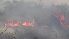 불타는 아마존 삼림 · 판타나우 습지...9월 들어 산불 다시 급증