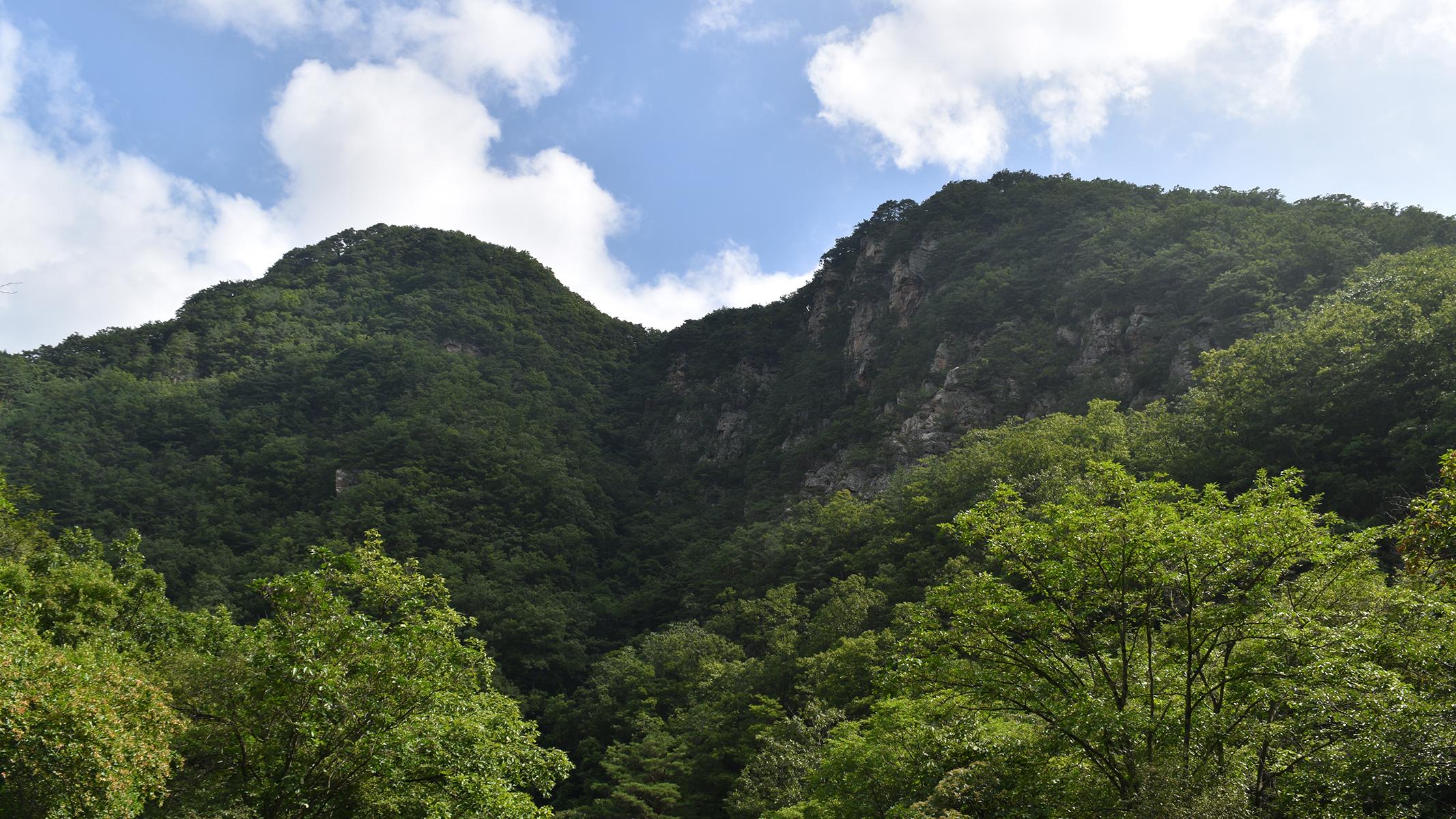 [산행포인트] 양평 '소리산'에서 즐기는 사이다 산행