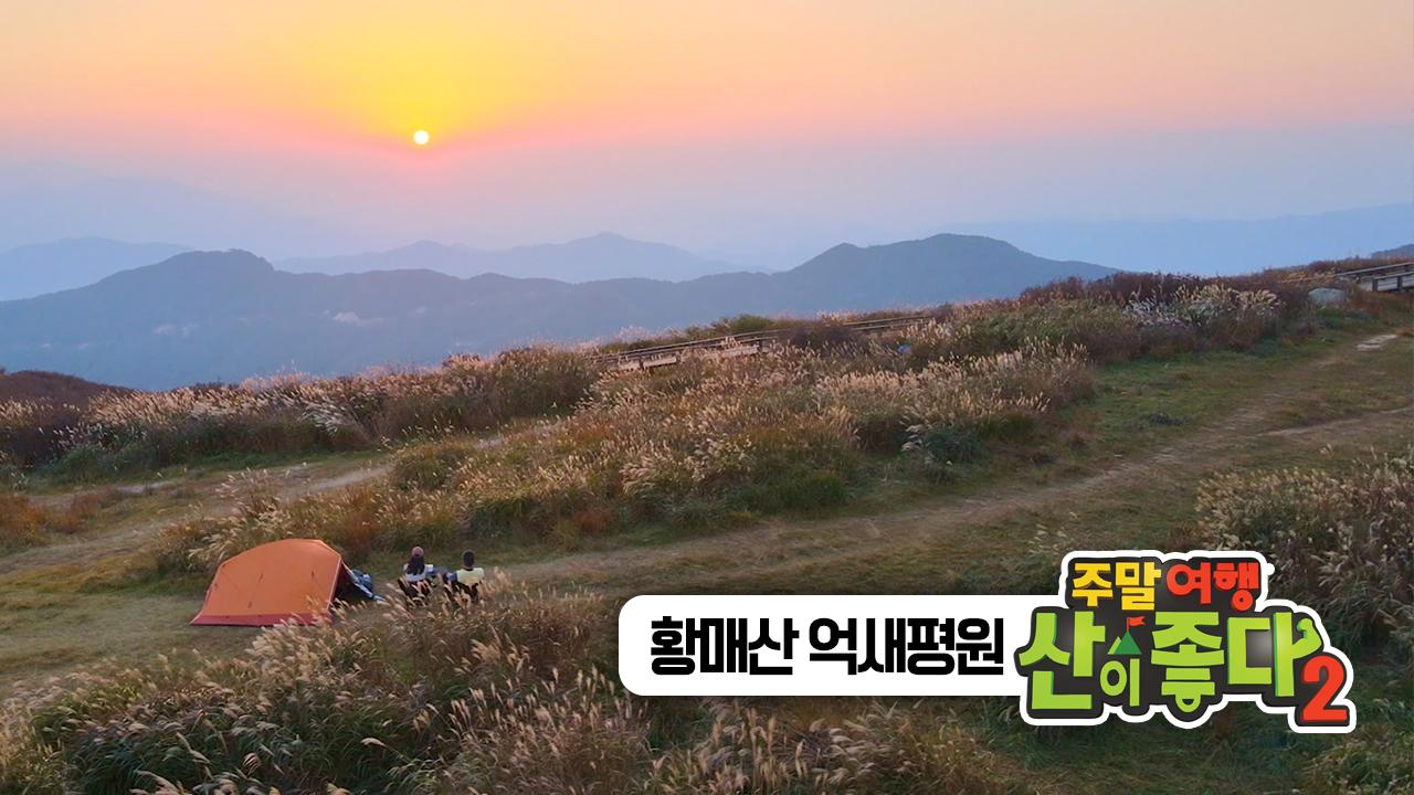 [추천! 주말여행] 한국의 가을 명산 특집2. 경남 '황매산'