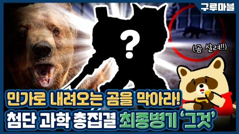 [구루마블] 일본 '곰' 퇴치 최종병기, 괴수를 잡기 위해 괴수를 풀었다!