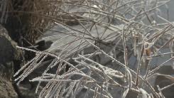[날씨] 칼바람에 체감 온도 -14℃ '뚝'...호남·제주 '대설특보'