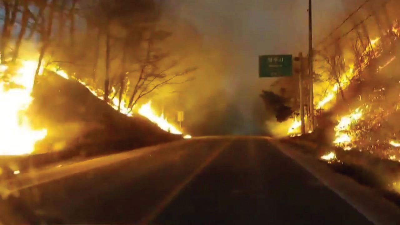 [전국]'타는 길과 붉게 물든 하늘'… 영상 속 긴급 산불 현장