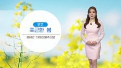 [날씨] 맑고 포근한 봄...동해안 '대형산불주의보'