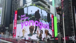 뉴욕 타임스퀘어에 한복 광고...문화유산 방문 캠페인 시동