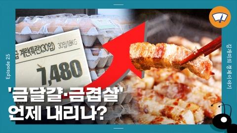 [개미일기] '금달걀·금겹살인데...' 체감과 다른 물가상승률, 왜?