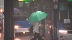 [날씨] 밤사이 중부 많은 비...낮까지 전북·경북 100mm↑