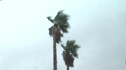 [날씨] 흐리고 충남·남부에 비...남해안 오후 비바람
