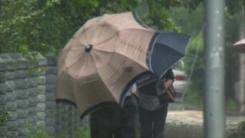 [날씨] 강한 태풍 '찬투' 남해안 스칠 듯...금요일 최대 고비