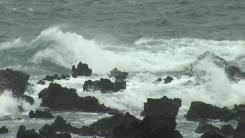 [날씨] 서귀포 거센 비바람...제주도 전 지역 태풍주의보