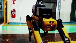 사람 대신 '로봇 개'가 공장 순찰한다...기아 광명공장 시범 운영