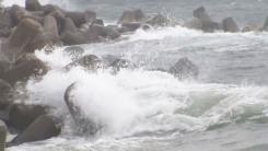 [날씨] 남해안 강한 비바람...태풍 밤사이 일본 상륙