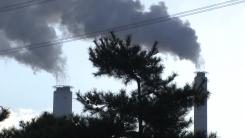 """위기이자 기회 '2050 탄소중립'...""""친환경 원료가 관건"""""""