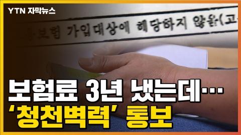 [자막뉴스] 보험료 3년 가까이 냈는데...'청천벽력' 통보