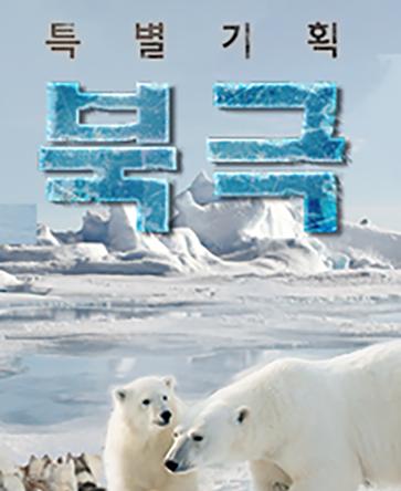 특별기획 북극