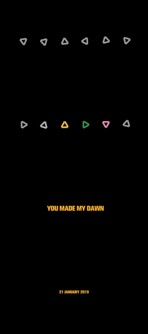 'YOU MADE MY DAWN'…세븐틴의 2019년