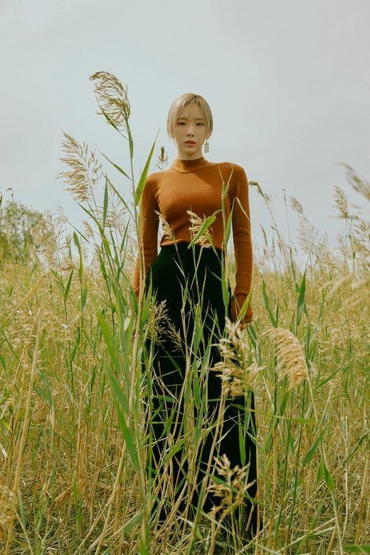소녀시대 태연, 컴백기념 사진전 개최