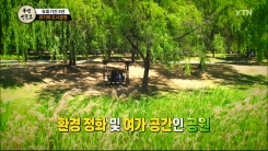 [131회 본방] 유효기간 2년, 위기의 도시공원