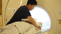 변경된 뇌 질환 MRI 검사비