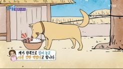 개밥에 도토리만 남으면 어떻게 될까?