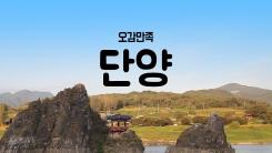 [YTN 구석구석 코리아] 제3회 '오감만족 단양 여행' 편