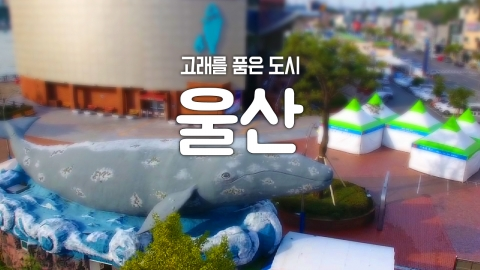 [YTN 구석구석 코리아] 제11회 고래를 품은 도시, 울산