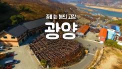 [YTN 구석구석 코리아] 제25회 꽃 피는 봄의 고장, 광양