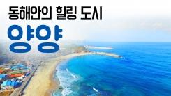 [YTN 구석구석 코리아] 동해안의 힐링 도시, 양양