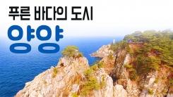 [YTN 구석구석 코리아] 푸른 바다의 도시, 양양