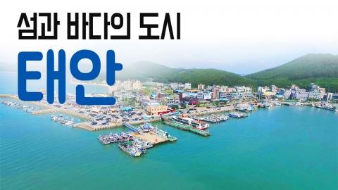 [YTN 구석구석 코리아] 섬과 바다의 도시, 태안