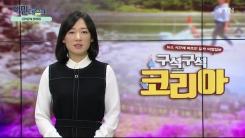 [3월 29일 시민데스크] 내가 본 DMB - 구석구석 코리아