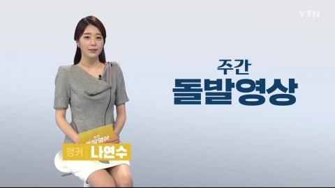 [주간 돌발영상] 7월 셋째 주